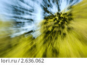 Синее и желтое. Стоковое фото, фотограф Валерия Бербериуш / Фотобанк Лори