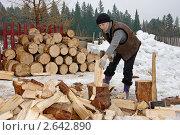 Купить «Женщина колет дрова», фото № 2642890, снято 2 апреля 2011 г. (c) Gaft Eugen / Фотобанк Лори