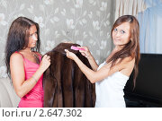Купить «Девушки чистят шубу», фото № 2647302, снято 5 июля 2011 г. (c) Яков Филимонов / Фотобанк Лори