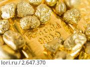 Купить «Золото», фото № 2647370, снято 13 марта 2011 г. (c) bashta / Фотобанк Лори