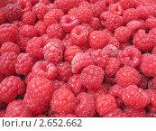 Купить «Ягоды малины крупным планом», фото № 2652662, снято 5 июля 2011 г. (c) Светлана Ильева (Иванова) / Фотобанк Лори