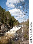 Купить «Водопад Кивач, Карелия», фото № 2657562, снято 25 мая 2008 г. (c) Алексей Кузнецов / Фотобанк Лори