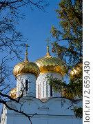 Свято-Троицкий собор, Ипатьевский монастырь в Костроме (2010 год). Стоковое фото, фотограф ElenArt / Фотобанк Лори