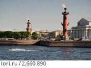 Купить «Ростральные колонны. Нева», эксклюзивное фото № 2660890, снято 31 мая 2011 г. (c) Александр Алексеев / Фотобанк Лори