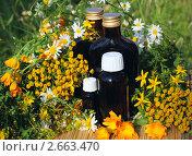 Купить «Лекарственные препараты на основе трав», фото № 2663470, снято 8 июля 2011 г. (c) Татьяна Белова / Фотобанк Лори