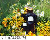 Купить «Лекарственные препараты на основе трав», фото № 2663474, снято 8 июля 2011 г. (c) Татьяна Белова / Фотобанк Лори