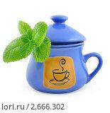 Керамическая синяя чашка с листьями мяты. Стоковое фото, фотограф Шикунец Татьяна / Фотобанк Лори