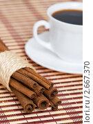 Купить «Корица и чашка кофе», фото № 2667370, снято 13 декабря 2018 г. (c) Дмитрий Калиновский / Фотобанк Лори