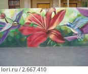 Граффити на улицах Воронежа (2011 год). Редакционное фото, фотограф Светлана Курц / Фотобанк Лори