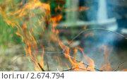 Купить «Костер. Сжигаем садовый мусор», видеоролик № 2674794, снято 15 декабря 2010 г. (c) Игорь Жоров / Фотобанк Лори