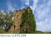 Купить «Ракурс каменной башни под синим небом», фото № 2675334, снято 14 мая 2011 г. (c) Борис Панасюк / Фотобанк Лори