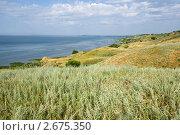 Купить «Северный берег Азовского моря», фото № 2675350, снято 1 июля 2011 г. (c) Борис Панасюк / Фотобанк Лори