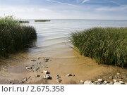 Купить «Берег Азовского моря», фото № 2675358, снято 1 июля 2011 г. (c) Борис Панасюк / Фотобанк Лори