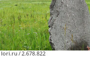 Купить «Древние камни на курганах Хакасии», видеоролик № 2678822, снято 6 августа 2010 г. (c) Юрий Пономарёв / Фотобанк Лори