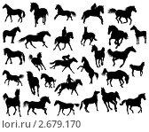 Купить «Силуэты лошадей», иллюстрация № 2679170 (c) Павел Коновалов / Фотобанк Лори