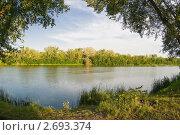 Лесное озеро. Стоковое фото, фотограф Борис Панасюк / Фотобанк Лори