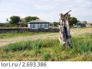 В станице Еланской Ростовской области. Стоковое фото, фотограф Борис Панасюк / Фотобанк Лори