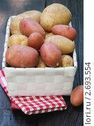 Купить «Молодой картофель в корзине», фото № 2693554, снято 18 июля 2011 г. (c) Светлана Зарецкая / Фотобанк Лори
