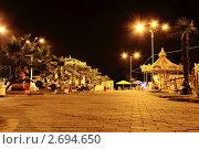 Ночной парк, Владикавказ (2011 год). Редакционное фото, фотограф Алан Мамуков / Фотобанк Лори