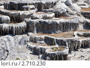 Купить «Диснейленд, ландшафтный дизайн», фото № 2710230, снято 4 мая 2011 г. (c) Parmenov Pavel / Фотобанк Лори