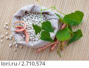 Купить «Фасоль в мешочке», фото № 2710574, снято 9 августа 2011 г. (c) Александр Романов / Фотобанк Лори