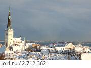 Таллин зимой. Старый город. Вид на море (2010 год). Стоковое фото, фотограф Сергей Алямовский / Фотобанк Лори