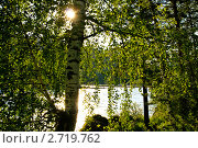 Купить «Вечер на берегу Катуни», фото № 2719762, снято 8 июля 2011 г. (c) Виктор Ковалев / Фотобанк Лори