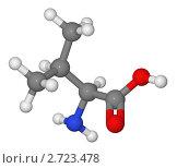 Купить «Шаростержневая модель молекулы валина», иллюстрация № 2723478 (c) Владимир Федорчук / Фотобанк Лори