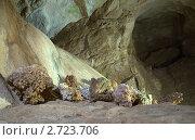 Купить «Окаменевшие кораллы в Мраморной пещере на Чатыр-Даге», фото № 2723706, снято 26 июля 2011 г. (c) Григорий Стоякин / Фотобанк Лори