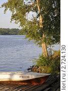 Купить «Пейзаж с берёзой на берегу на закате. Город Плёс на Волге», фото № 2724130, снято 5 апреля 2010 г. (c) Лада Иванова / Фотобанк Лори