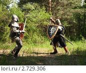 Купить «Битва рыцарей», фото № 2729306, снято 5 июня 2010 г. (c) Яков Филимонов / Фотобанк Лори