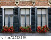 Купить «Три окна  с красными цветами», эксклюзивное фото № 2733890, снято 22 июля 2011 г. (c) Илюхина Наталья / Фотобанк Лори