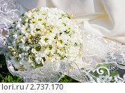 Свадебный букет из ромашек на платье. Стоковое фото, фотограф Анна Лисовская / Фотобанк Лори