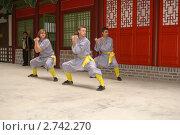 Показательное выступление боевых искусств Китая (2010 год). Редакционное фото, фотограф Потолоков Роман Игоревич / Фотобанк Лори