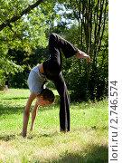 Купить «Девушка проводит гимнастическую тренировку на природе», фото № 2746574, снято 23 августа 2011 г. (c) Михаил Иванов / Фотобанк Лори