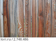 Забор. Стоковое фото, фотограф Марина Зимина / Фотобанк Лори