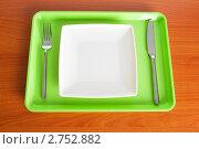 Купить «Белая квадратная тарелка с ножом и вилкой на подносе», фото № 2752882, снято 24 апреля 2010 г. (c) Elnur / Фотобанк Лори