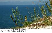 Купить «Прибрежный пейзаж острова Ольхон. Озеро Байкал», видеоролик № 2752974, снято 12 марта 2011 г. (c) Виталий Зверев / Фотобанк Лори