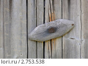 Купить «Деревянный запор на сарае», фото № 2753538, снято 17 июля 2011 г. (c) Victor Spacewalker / Фотобанк Лори