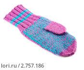 Купить «Шерстяная рукавичка», фото № 2757186, снято 24 февраля 2019 г. (c) Петр Малышев / Фотобанк Лори