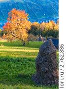 Купить «Осень в горах», фото № 2762886, снято 12 октября 2010 г. (c) Юрий Брыкайло / Фотобанк Лори