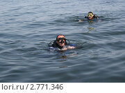 Группа дайверов после погружения (2011 год). Редакционное фото, фотограф Робул Дмитрий / Фотобанк Лори