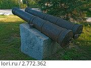 Старинные пушки с Бийской крепости. Стоковое фото, фотограф Кошевой Олег Викторович / Фотобанк Лори