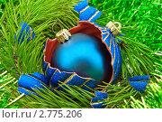Купить «Елочные игрушки на елочных ветках», фото № 2775206, снято 9 ноября 2009 г. (c) bashta / Фотобанк Лори