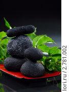 Купить «Шунгитовые камни для СПА-процедур», фото № 2781002, снято 4 сентября 2011 г. (c) Марина Сапрунова / Фотобанк Лори