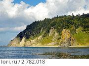 Купить «Мыс Столбчатый (вид с моря), остров Кунашир, Курильская гряда», фото № 2782018, снято 26 января 2020 г. (c) RedTC / Фотобанк Лори