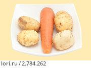Купить «Морковь и картофель», фото № 2784262, снято 4 сентября 2011 г. (c) Шупейко Алексей / Фотобанк Лори