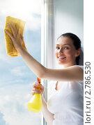 Купить «Девушка моет окно», фото № 2786530, снято 28 августа 2011 г. (c) Константин Юганов / Фотобанк Лори