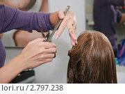 Купить «Стрижка в парикмахерской (руки стилиста)», эксклюзивное фото № 2797238, снято 25 августа 2011 г. (c) Алёшина Оксана / Фотобанк Лори