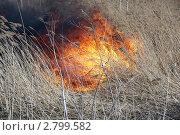 Пожар. Стоковое фото, фотограф Пушкина Ольга / Фотобанк Лори